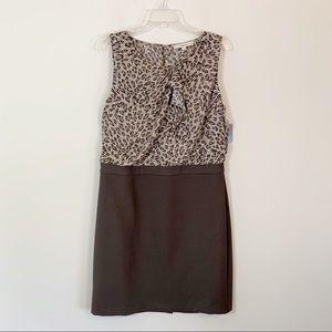 LOFT • Brown Leopard Dress Size 14